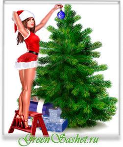 Аромат праздника - эфирное масло на елку!
