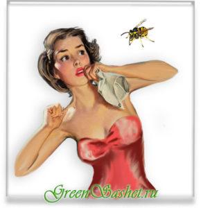 Укусы насекомых и их последствия.